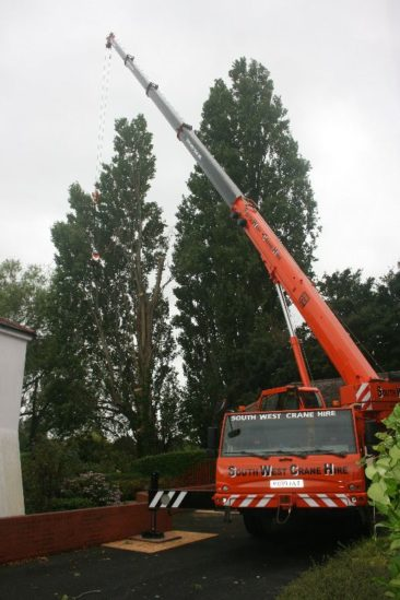 exeter quay tree surgery