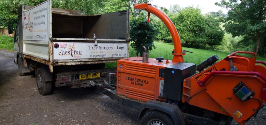 A Day in the Life of a Tree Surgeon