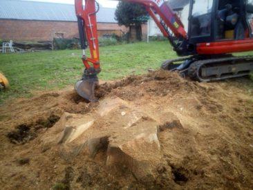 stump grinding in devon