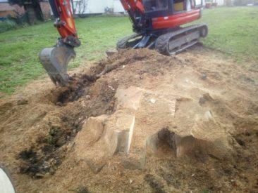 stump grinding in Cheriton Bishop, Devon