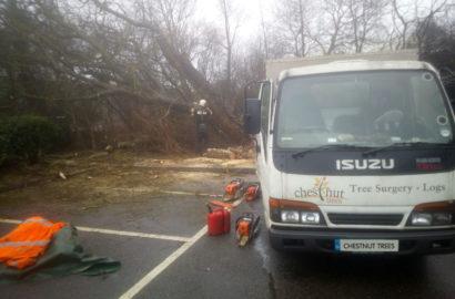 Storm Damage at Marsh Barton